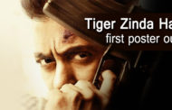 Tiger Zinda Hai first poster is released