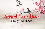 A Bird Came Down by Emily Dickinson