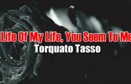 Life Of My Life, You Seem To Me by Torquato Tasso
