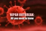 Nipah outbreak in India: What you should know