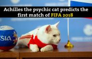 Achilles made the first prediction of FIFA 2018