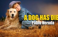 A Dog Has Died by Pablo Neruda