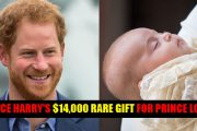 Prince Harry forks out $14,000 on rare gift for his nephew
