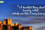 """A beautiful thing about learning is that nobody can take it away from you."""