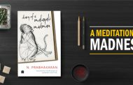 Diary of a Malayali Mad man by N. Prabhakaran