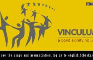 Word of the Day: vinculum