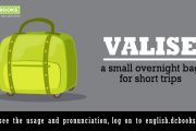 Word of the Day: valise